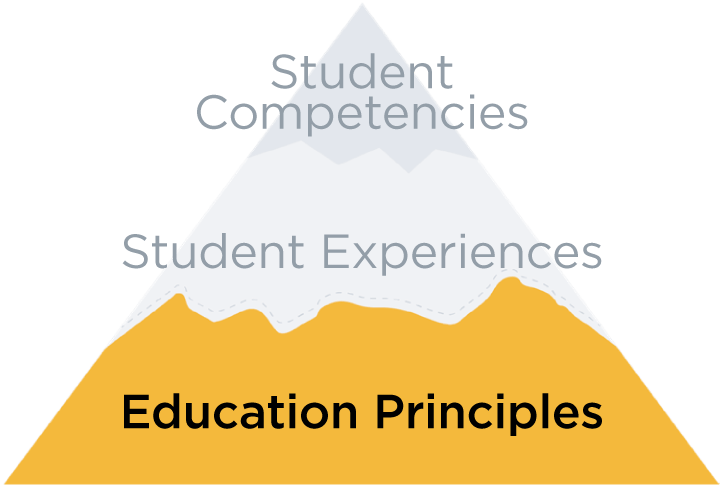 Vision 2030 - Education Principles