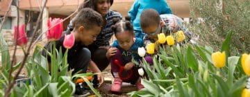 Policy Brief: Colorado's New Agency for Early Childhood